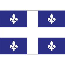 quebec-flag-vector-19907285